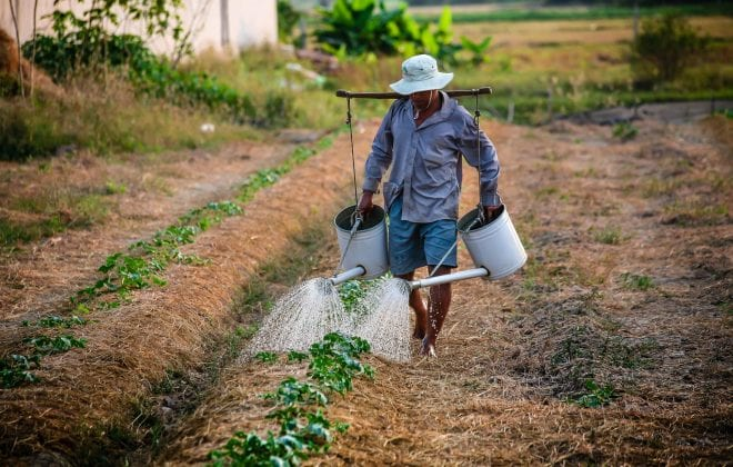 watering-watering-can-man-vietnam-162637